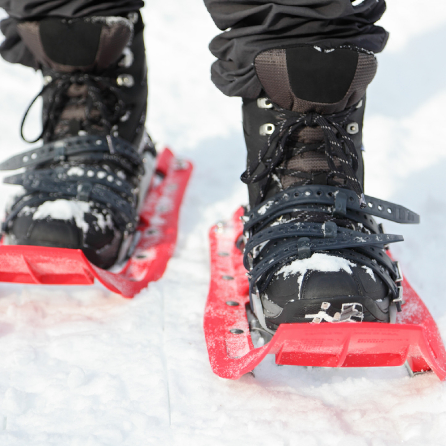 3 great reasonsto rent snowshoes